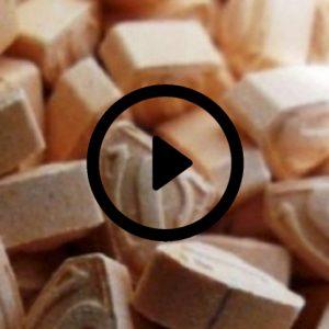 Drogas y muerte en Time Warp; los riesgos de las drogas sintéticas